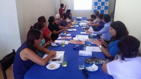Reunión con especialistas de la Dirección Regional de Salud del Gobierno Regional de Lima