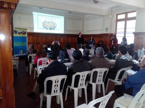 Mesa de Ica en taller para identificar brechas y visión de desarrollo al 2030