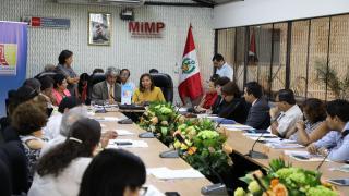 Comité Ejecutivo Nacional se reúne con ministra de la Mujer para tratar lucha contra la violencia hacia niñas, niños y adolescentes